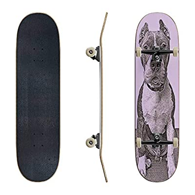 EFTOWEL Skateboards Pit Bull Terrier Dog in Animal shelter Hoping to be Adopted Lonely Classic Concave Skateboard Cool Stuff Teen Gifts Longboard Extreme Sports for Beginners and Professionals : Sports & Outdoors