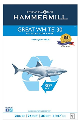 Hammermill Great White Copy Paper, Ledger Paper, 20 Lb, 30% Recycled, 500 Sheets Per Ream, Case of 5 Reams by Hammermill (Image #3)