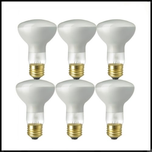 50-Watt R20 120-Volt Incandesent Flood Light Bulb (R20 Floods)