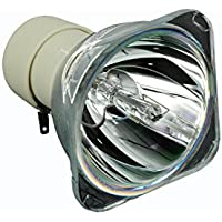 AWO BL-FU195C / SP.72J02GC01 Premium Projector Bare Lamp Replacement Bulb For OPTOMA HD142X,HD27,EH331,S341,W341,X341,DW445,W344,W355,W354,DW455,DW441,EH345,HT38,HT27X,OPX2133,DH345C,HD27,HT29V