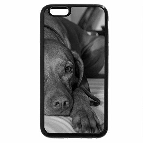 iPhone 6S Case, iPhone 6 Case (Black & White) - Dog blohormer