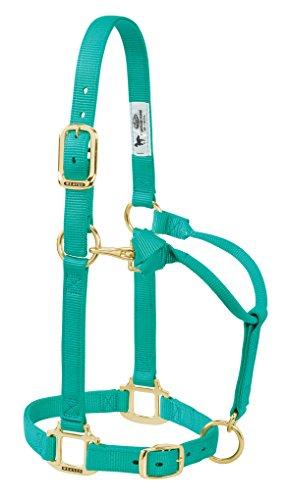 - Weaver Leather Original Adjustable Nylon Horse Halter