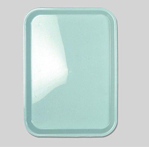 Premium Plus Dental Standard Flat Plastic Trays Autoclavable 5 Pieces, N650 by Premium Plus (Image #1)