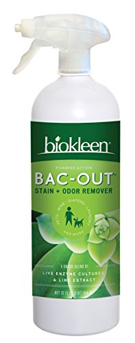 Biokleen Bac-Out Stain+Odor Remover Foam Spray, Destroys Stains & Odors Safely, for Pet Stains, Laundry, Diapers, Wine, Carpets, More, Eco-Friendly, Non-Toxic, Plant-Based, 32 Ounces by Biokleen