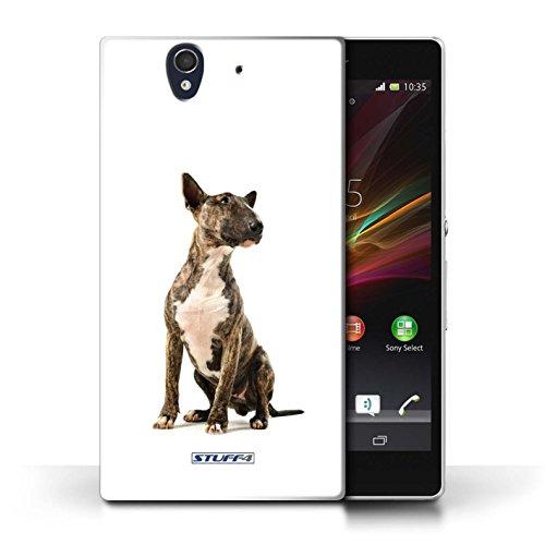 Etui / Coque pour Sony Xperia Z / Bull Terrier conception / Collection de Chiens