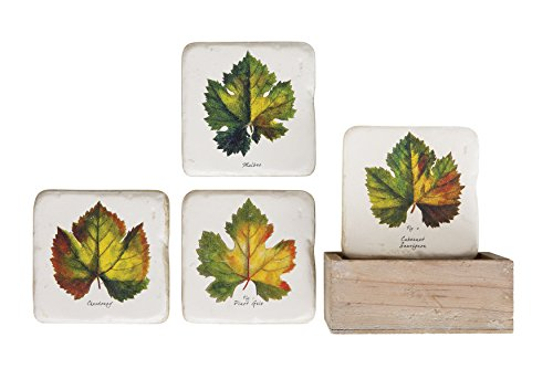 (Creative Co-op Sonoma Coaster Set with Vintage Grape Leaf and Wood Box, 6)
