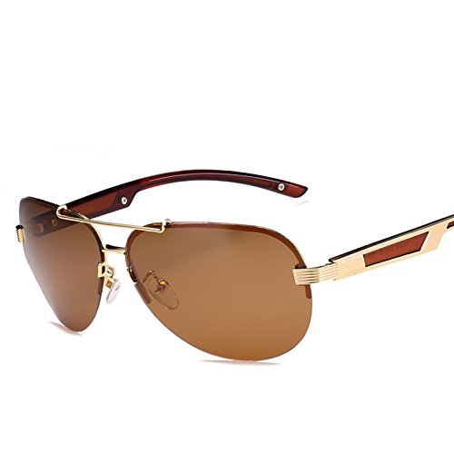 de Aviador Hombres AT9028 de de Pynxn Montura Gafas Caja Oro Luxury Gafas la Conducci¨®n Gris Oculos vidrios de de los Caso con polarizadas sin los Sol T¨¦ para Hombres Sun qv4wHZqx8