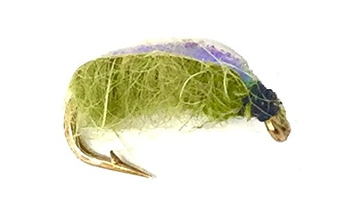 Pupa Caddis Bead (Fly Fishing Nymph Flies for Trout Electric Caddis - One Dozen Wet Flies - 3 Size Assortment 14,16,18 (4 of Each Size) (Electric Caddis))