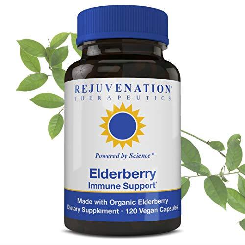 Rejuvenation Therapeutics Premium Organic Elderberry - Organic Elderberry Extract - Elderberry Capsules for Immune Support - Elderberry Cold Fighter - Vegan Friendly