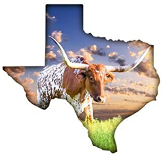 "product image for Next Innovations 101410034-LONGHORN Wall Décor, 16"" x 15"", Multicolor"