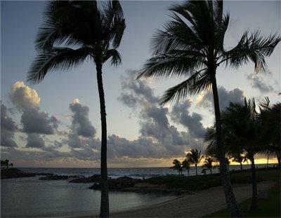 ''Ko Olina Palms Sunset'' Art Photograph Oahu Hawaii By Michael Verlangieri by By Michael Verlangieri