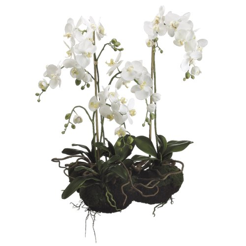 Silk-Dcor-Phalaenopsis-with-Soil-and-Moss-33-Inch-White