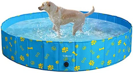 SCENEREAL Dog Swimming Pool – Large Foldable Pet Pool Bathing Tub with Paw Printing Outdoor Bathtub Collapsible for Small Medium Large Dogs Puppy X-Large and Large