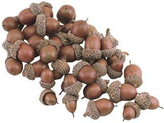 amazon com bag of acorns natural look resin country primitive fall