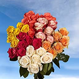 GlobalRose 100 Roses for the Best Price