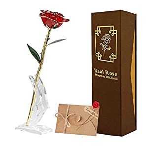 TECHSHARE 24k Gold Rose Long Stem Real Rose with Base Stand and Greeting Card, Best Gift for Valentine's Day, Mother's Day, Anniversary, Birthday Gift Red
