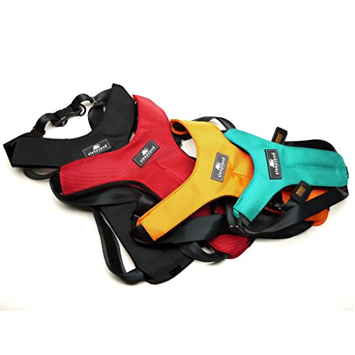 Sleepypod ClickIt Sport Crash-Tested Car Safety Dog Harness (Medium, Strawberry Red) by Sleepypod