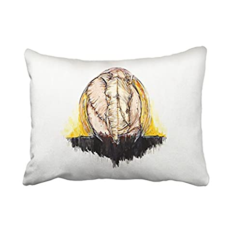 Emvency Decorative Throw Pillowcase Standard 20x26 Inches Abstract Elephant And Rhinoceros Watercolor Cotton Pillow Cover With Hidden Zipper Decor - Round Sterling Silver Wire Basket