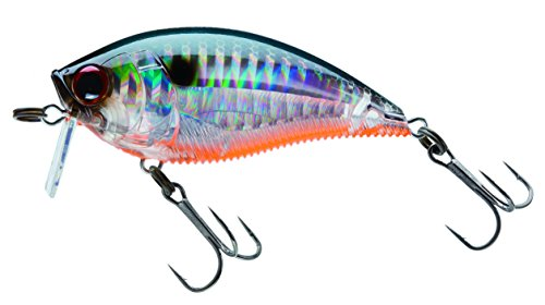 Yo-Zuri 3DB Wake Bait Floating Diver Lure