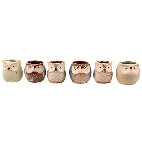 (Owl Ceramic Flower Pot, WCIC 6Pcs/ Set Bird Mini Pottery Planter Home Office Decor 6 difference style)