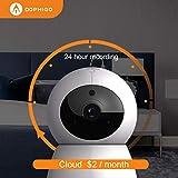 DophiGo 1080P HD Dome 360° Wireless WiFi Baby