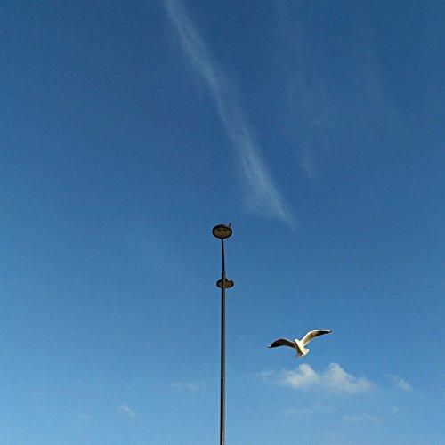 London Skyline, Sky Print, Sky Art, Bird Print, Bird Photogr