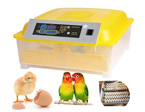 Aceshin Automatic Egg Hatcher Incubator with Temperature Control, Digital Poultry General Purpose Incubators for Chickens Ducks Birds (48 Egg)