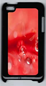 Beautiful Water Drops On A Red Flower Custom iPod Touch 4/Apple iPod 4 Case Cover Polycarbonate Black