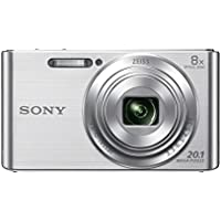Sony Cyber-SHOT DSC-W830 ( 20.5 MP,8 x Optical Zoom,2.7 -inch LCD ) (International Model)