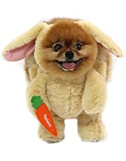 Pandaloon Bunny Rabbit Dog and Pet Halloween Costume Set - AS SEEN ON Shark Tank - Walking Teddy Bear with Arms (Size 2 (15-16.5 in Total Height), Bunny)