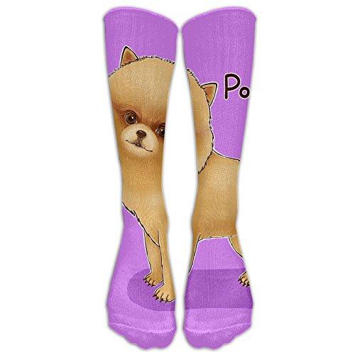Cute Pomeranian Spandex Classic For Women Or Man Baseball Knee High Sport Sock Knee-high Socks Pomeranian Baseball