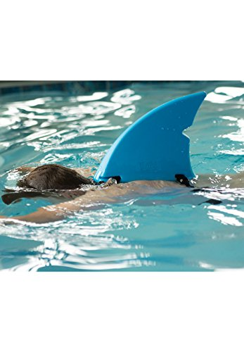 Shark Fin For Swimming And Costume By Fin Fun Blue Import It All