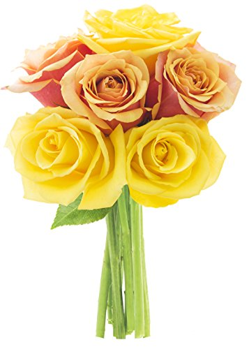 Bouquet of Long Stemmed Orange and Yellow Roses (Half Dozen)