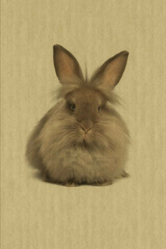 Lionhead: Artified Pets Bunny Rabbit Journal/Notebook/Diary (Artified Pets Lionhead Bunny Rabbit)