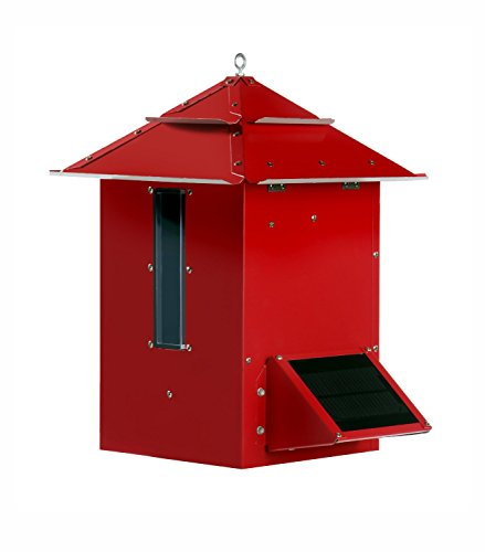 Koi Feeder, Red Finish by Koi Cafe