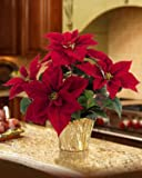 Table Top Silk Poinsettia Plant - Red
