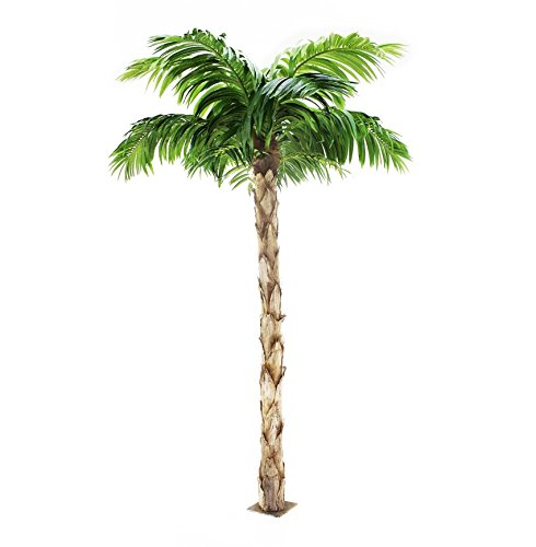 Quality Artificial Peruvian Palm Tree 8ft Tall, Replica Indoor / Outdoor - 240cm (Palm Tree Outdoor)