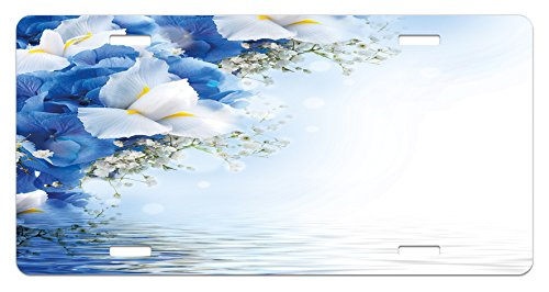 Dreamy Hydrangea (Lunarable Blue and White License Plate, Blue Hydrangeas and White Irises Over The Sea Romantic Bouquet Dreamy, High Gloss Aluminum Novelty Plate, 5.88 L X 11.88 W Inches, Blue White Yellow)