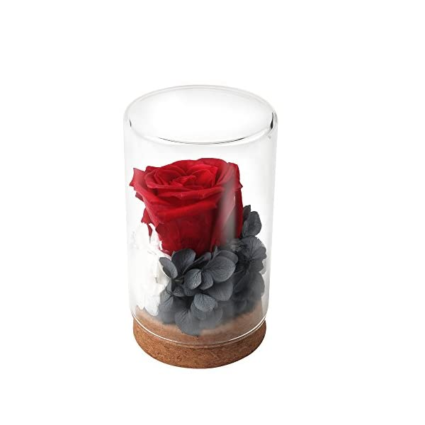 Unique Gifts For Women,Preserved Flower Rose,Never Withered Roses,Upscale Immortal Flowers,Gifts For Women,Her,Girls,Sister, Mother's Day,Valentine's Day,Anniversary,Birthday,Wedding(Red Rose)