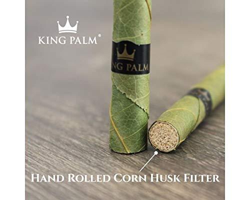 Amazon com: King Palm Mini Size Natural Pre Wrap Palm Leafs