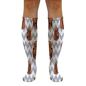 Funny Knee High Socks Sussex Spaniel Dog Gray Zigzag Tube Women & Men 1 Size 34