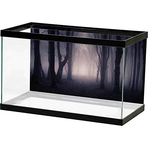 hexagon aquarium 35 gallon - 4