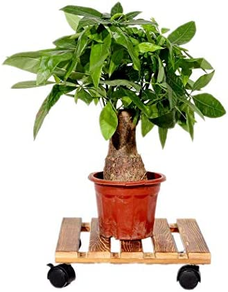 Malayas 2PCS Soporte para Macetas de Madera con 4 Ruedas Universales Base Móvil de Plantas Flores para Jardín Hogar Interior Exterior 30 x 30cm