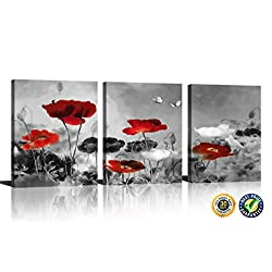 HLJ Modern Poppies Butterfly Fly Over The Black and White Red Flower Abstract Painting Still Life Canvas Wall Art for Living Room Decor 3pcs/Set (A-RF, 12x16inchx3pcs)