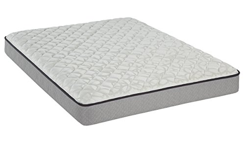 Sealy Maple Grove Firm Tight Top Mattress, (Sealy Twin Mattress)