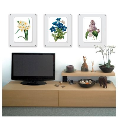 Wexel Art 21x27-Inch Popster Plus Magnetic Single Panel Acrylic Floating Frame for Up to 18x24 Art & Photos by Wexel Art