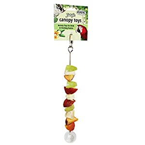 Stainless Steel Fruit Skewer - Unique Forage Toy - For Sugar Gliders Rats Chinchillas Ferrets Parrots Hamsters Squirrels Hedgehogs Guinea Pigs Rabbits Prairie Dogs Marmosets Degus Opossums Skunks Bird 57