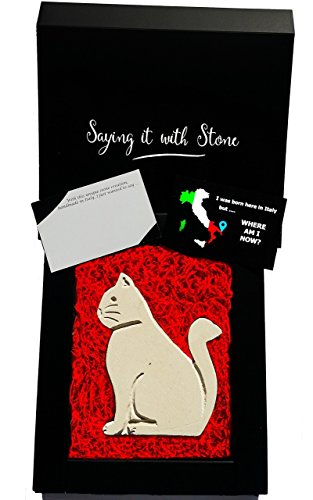 Sitting Cat Handmade in Italy - Elegant gift box & blank message card included - Ancient & rare limestone containing fossil fragments - Original gift for cat lovers - Birthday retirement anniversary (What Is The 35 Year Anniversary Gift)