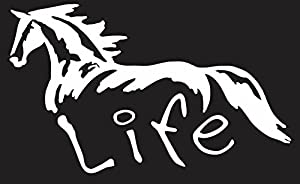 Amazoncom Horse Life  White VINYL Car Decal Art Wall Sticker - Car decal stickers