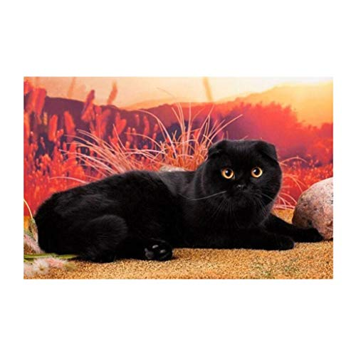 Prettyia DIY Cat Diamond/Crystal/Rhinestone Painting Cross Stitch Kit Canvas Ornaments - Black Cat (Black Cross Stitch Cat)